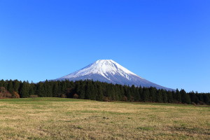 Mount_Fuji_from_meadow