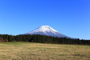 Mount_Fuji_from_meadow