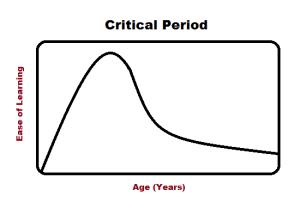 Critical_Period
