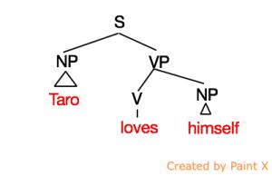 anaphor1