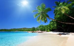 7015464-tropical-caribbean-beach