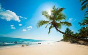 7022104-caribbean-beach