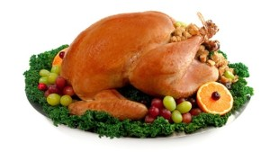 Thanksgiving-Turkey-03